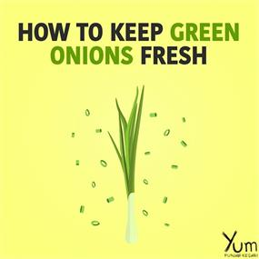 How to Keep Green Onions Fresh